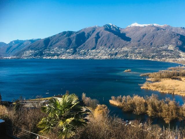 Blick von Magadino auf den Lago Maggiore