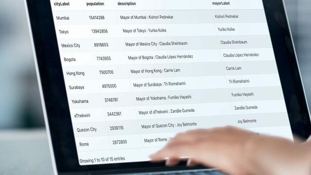 Ein Bildschirm auf der eine Liste zu sehen ist.