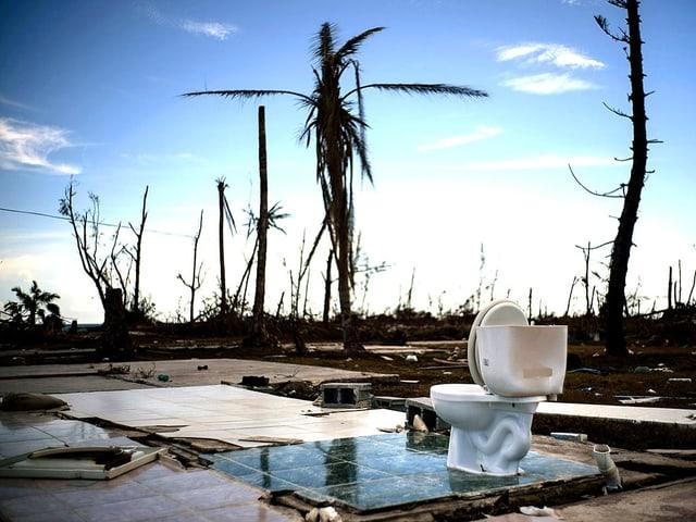 Eine einsame Kloschlüssel in der Dämmerung auf den Bahamas. Im Hintergrund ein paar kahle Bäume und noch mehr Schutt, nach dem Hurrikan «Dorian».