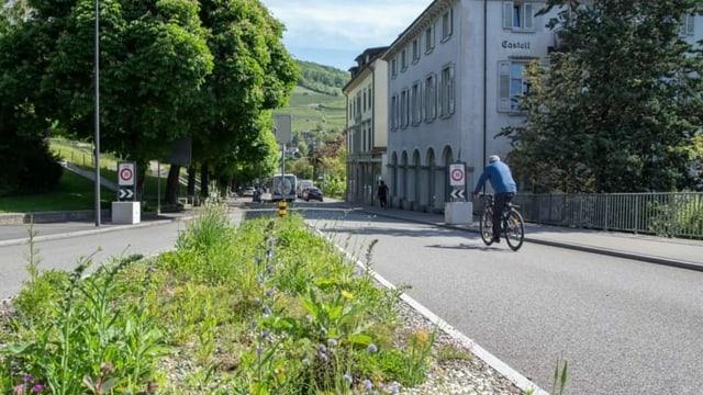 Grünstreifen am Strassenrand gegen die Hitzeinseln in den Städten.