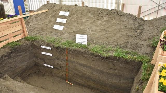 Profil dal terren sin l'Obere Au a Cuira – rusna cun marcà las differentas parts dal terren sutteran.