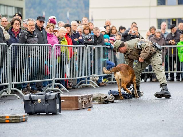Ein Soldat mit einem Spürhund und einer Reihe von Koffern.