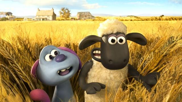 Ein violettes Wesen und ein Shaf stehen in einem Getreidefeld.