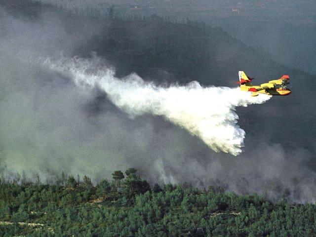 Ein gelbes Löschflugzeug versprüht Wasser über brennenden Büschen.