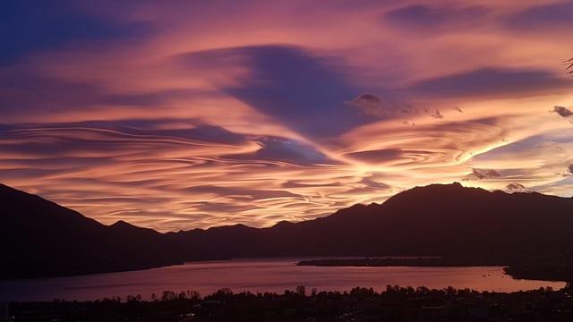 Von der Abendsonne angeschienene Altocumulus-Wolken.