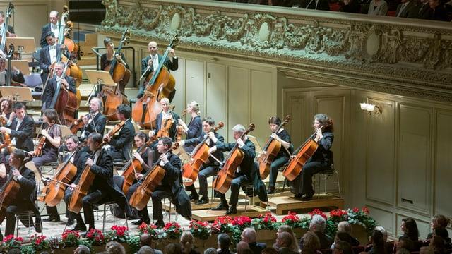 Orchestermusiker mit Instrumenten in der Zürcher Tonhalle, im Vordergrund Köpfe des Publikums