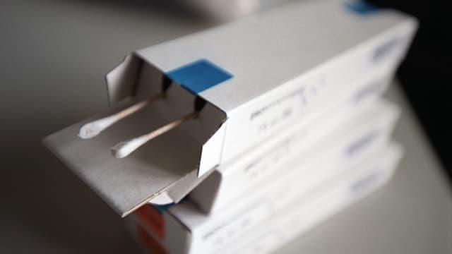 Wattestäbchen für DNA-Proben (Abstriche der Mundschleimhaut).