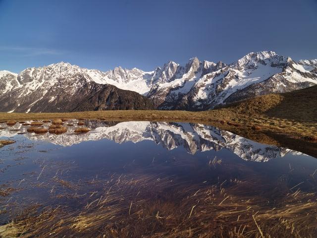 Die schneebedeckten Bergeller Alpen spiegeln sich in einer Schmelzwasserpfütze weit oberhalb Soglio/GR.
