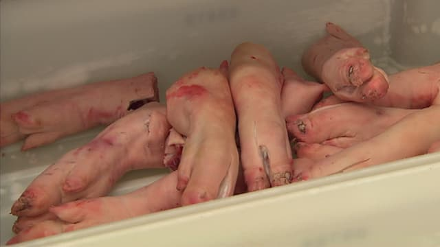 Schweinefüsse