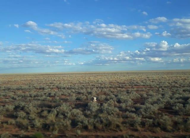 Die schier endlose Weite in Nullarbor – der längsten geraden Zugstrecke der Welt.