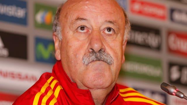 Spaniens Nationaltrainer Vicente del Bosque könnte nach der WM in Brasilien aufhören.