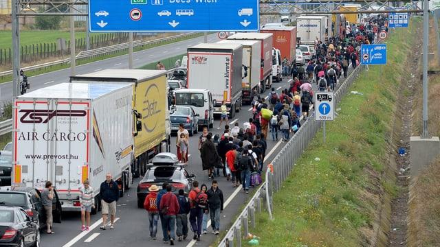Flüchtlinge auf dem Weg nach Österreich vor der Grenze.