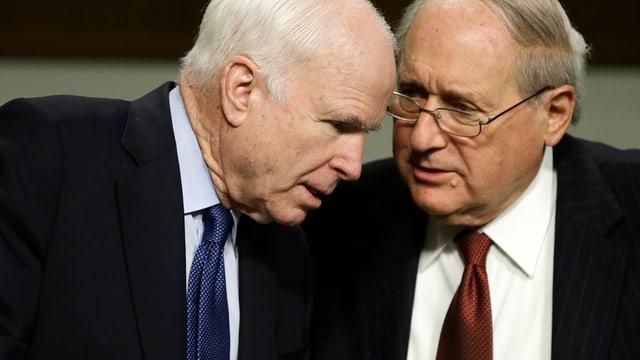 McCain und Levin