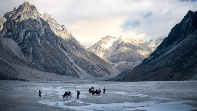 Berge und Tal und viele Menschen mittendrin
