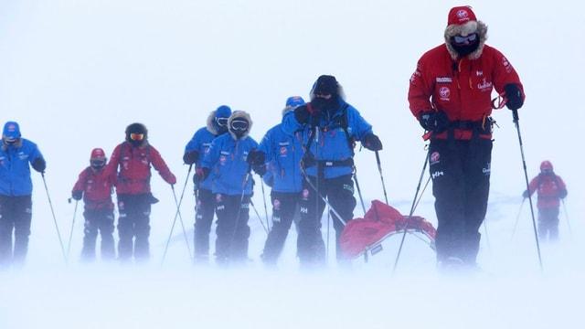 Prinz Harry und acht weitere Expeditionsteilnehmer in Anzüge eingehüllt auf Skiern im Schnee.