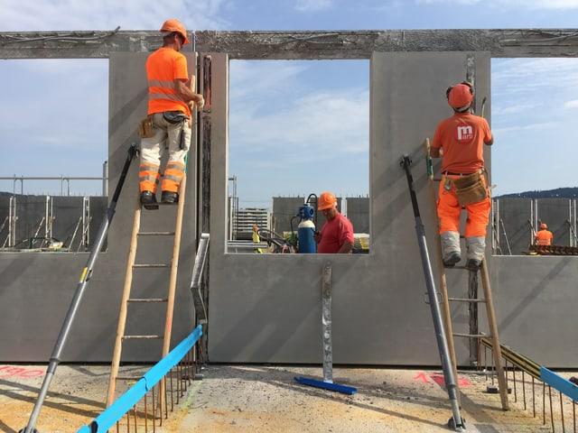 zwei Bauarbeiter in orangen Leuchtwesten stehen auf Leitern