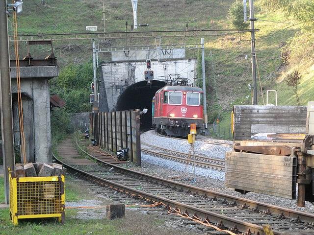 Tunnel und Güterzug
