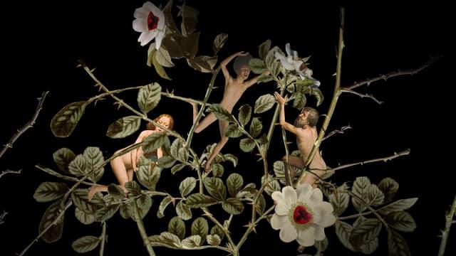 Menschen sind in Rosen bzw. ihren Dornen gefangen. Es sind Lutherrosen.