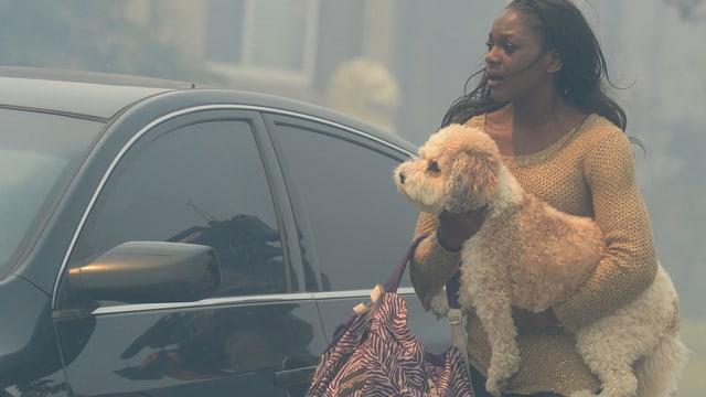 Frau mit Hund vor einem Auto, das von Rauch eingehüllt ist