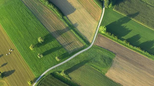 Ackerlandschaft aus der Vogelperspektive