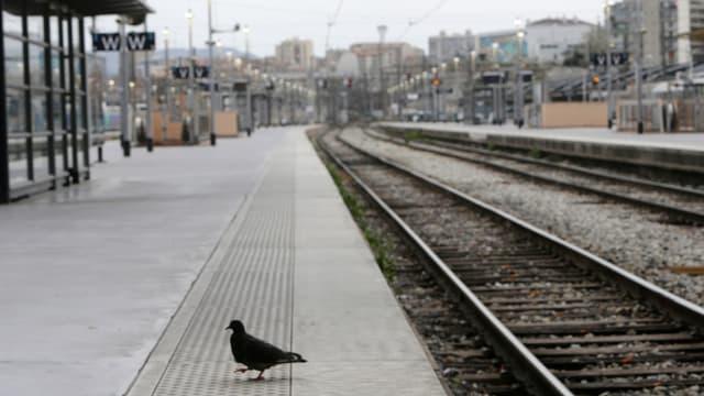 staziun da tren