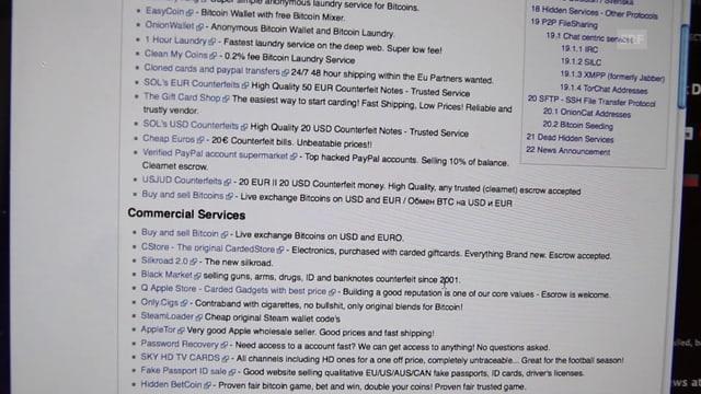 Ein Bild der Tor-Webseite The Hidden Wiki auf dem eine Linksammlung zu sehen ist.