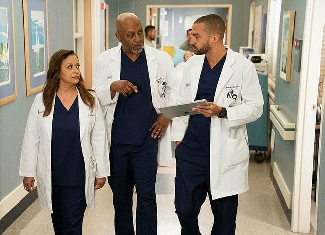 Dr. Catherine Avery, Dr. Richard Webber und Dr. Jackson Avery im Gespräch