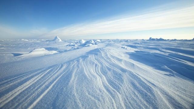 Luftabdrücke im Packeis in der Arktis. (reuters)