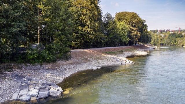Fluss mit natrülichem Flussufer und Bäumen