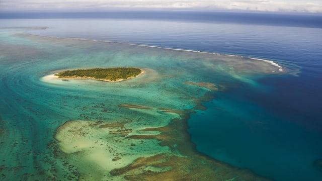 Luftaufnahme von einer Insel und Korallenriff