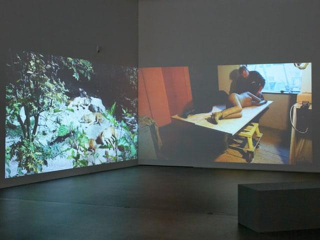 Man sieht zwei Videos von Luzia Hürzeler: Schlafende Wölfe und die Skulptur, die sie schlafend zeigt.