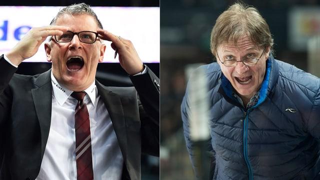 ZSC-Trainer Crawford und sein Davoser Antipode Del Curto beschweren sich lautstark.