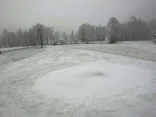 Schnee in Grindelwald