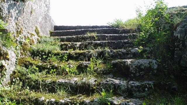 Steintreppe der Burg Bärenfels