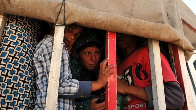 Flüchtlinge in einem Laster hinter Gittern.