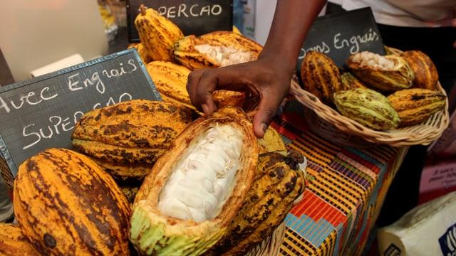 Verkauf von Kakaobohnen in der Elfenbeinküste.