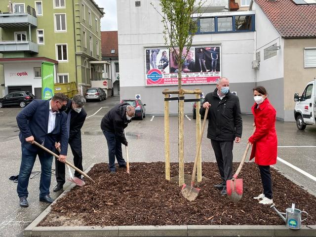 Politiker pflanzen Baum