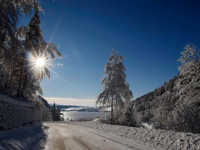 Verschneite Strasse in Richtung Vallée de Joux bei blauem Himmel, im Hintergrund verschneite Tannen und der zugefrorene See
