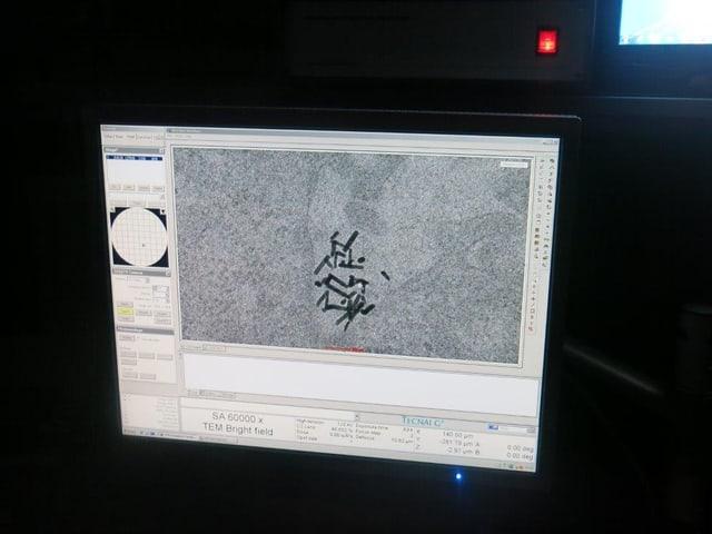 Ein Computerbildschirm mit Strichen drauf.