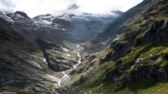 Nebelverhangene Berglandschaft