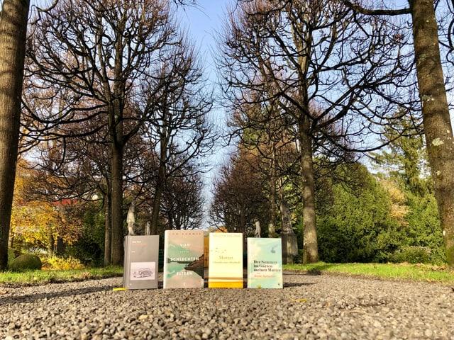 Die Bücher von Anna Stern, Tom Kummer, Melitta Breznik und Ariela Sarbacher stehen zwischen Herbstbäumen