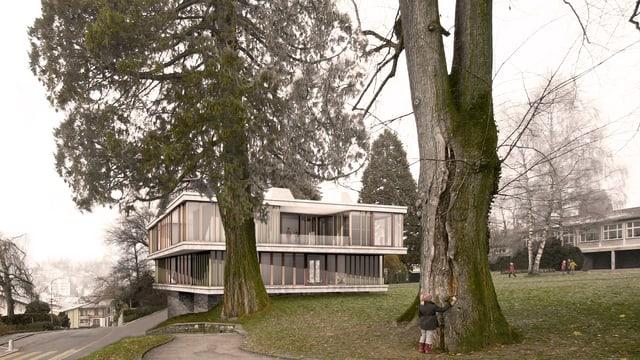 Visualisierung der geplanten Schulhaussanierung: Pavillon hinter Bäumen.