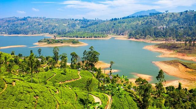 Video «Wildes Sri Lanka - Seenland (1/3)» abspielen