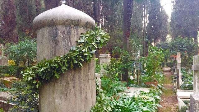 Ein mit Pflanzen bewachsener grauer Grabstein.