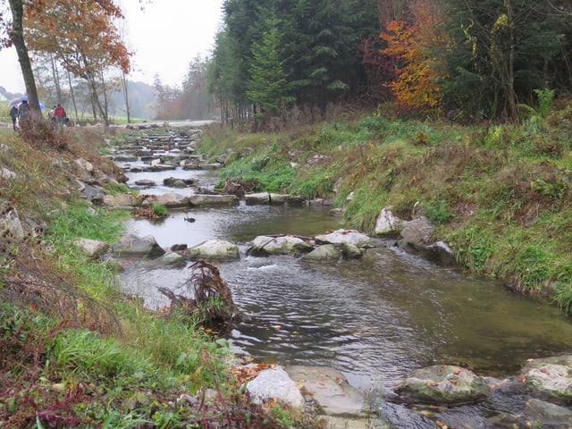 Flüsschen zwischen Feld und Wald.