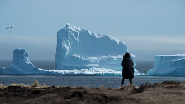 Symbolbild: Eine Person beobachtet einen vorbeiziehenden Eisberg auf dem Meer.
