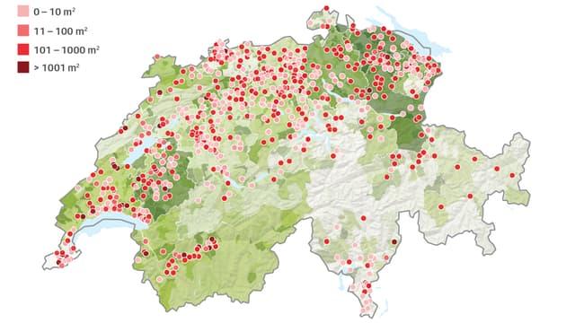 Verteilung Flächen