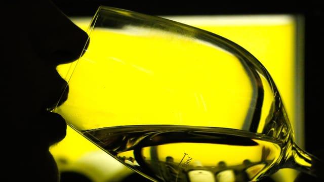 Aufnahme einer Person in grünem Gegenlicht, die aus einem Weinglas trinkt.