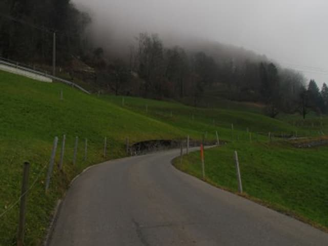 Die steile Strasse von Dallenwil hoch auf den Wiesenberg.