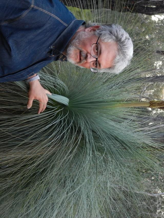 Thomas Speck bei einem Grasbaum
